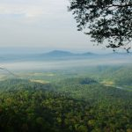 Ekpedisi Gunung Panti